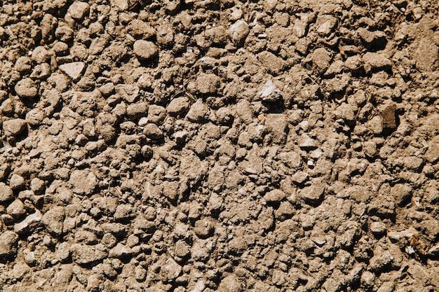 Uma pequena pedra cinzenta esmagada esmagada na lama.
