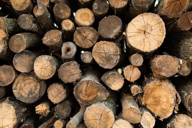 Uma pilha de árvores serradas secas. lenha para o forno ou lareira.