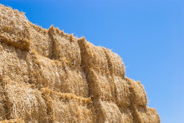 Uma pilha de fardos de feno em uma paisagem rural