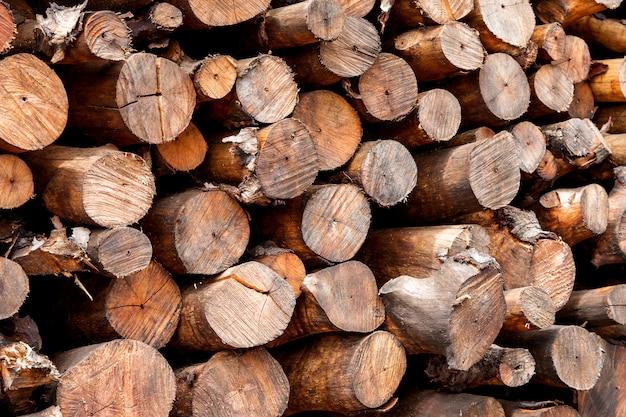 Uma pilha de madeiras de mangue na fábrica de carvão