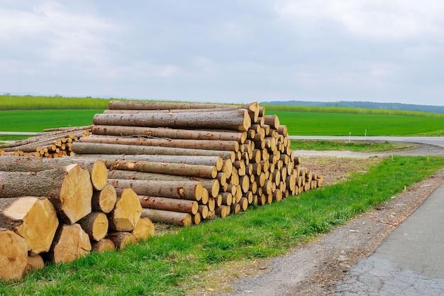 Uma pilha de toras de madeira repousa na grama perto da estrada. o problema do desmatamento. problema ecológico.