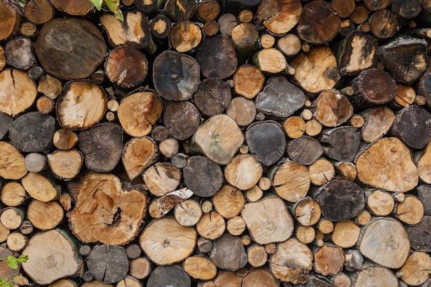 Uma pilha de toras derramadas em uma seção de bétula, freixo, carvalho, fundo de madeira redonda derramada