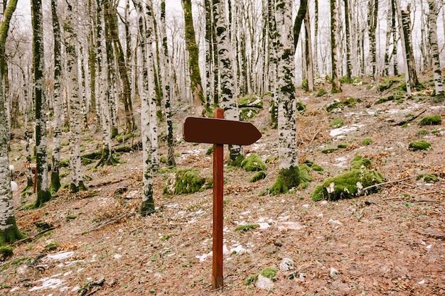 Uma placa de madeira com um campo vazio fica no meio da floresta em uma colina