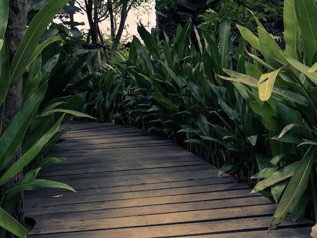 Uma ponte de madeira em um belo jardim