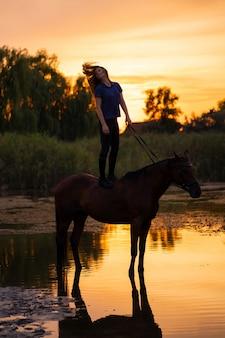 Uma rapariga que monta um cavalo em um lago raso.
