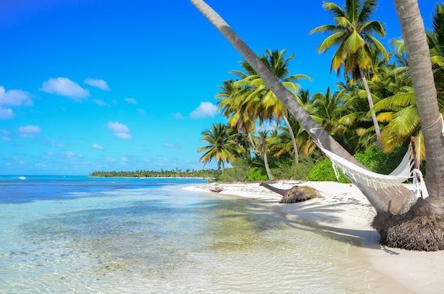 Uma rede entre palmeiras na praia tropical.