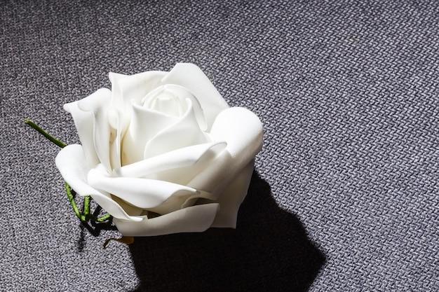 Uma rosa branca em um fundo cinza