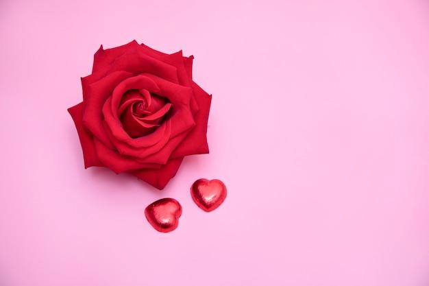 Uma rosa vermelha em fundo rosa