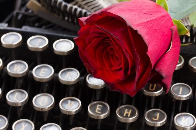 Uma rosa vermelha fresca na máquina de escrever vintage com a palavra de amor de perto