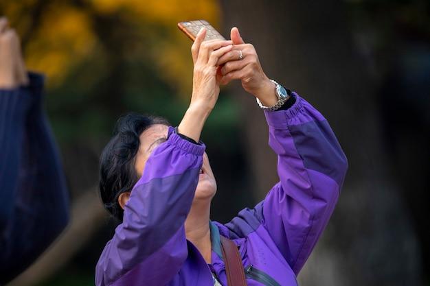 Uma senhora idosa tirando fotos embaixo da árvore ginkgo
