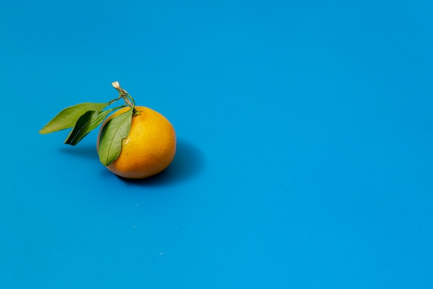 Uma tangerina saborosa simples na superfície colorida com folhas verdes e um galho