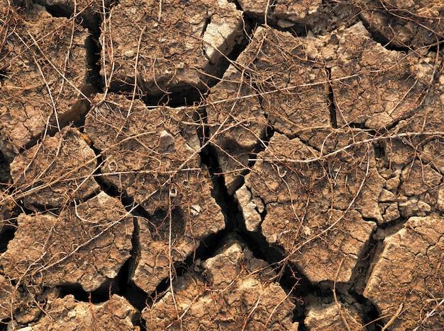 Uma textura e um fundo à terra secos rachados.