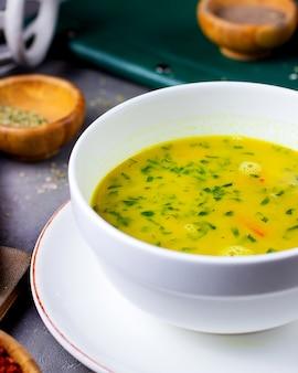 Uma tigela de sopa de legumes guarnecida com coentro