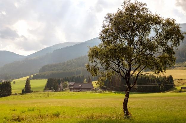 Uma típica pequena vila austríaca no sopé das montanhas alpinas