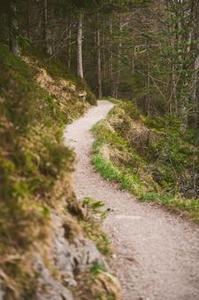 Uma trilha de caminhada nos alpes da baviera durante a primavera