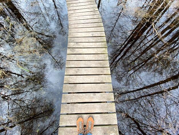 Uma trilha de madeira pelas trilhas naturais do lago e reflexos de árvores na água