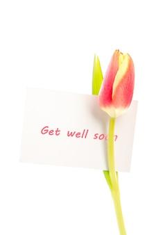 Uma tulipa com um cartão bem pronto