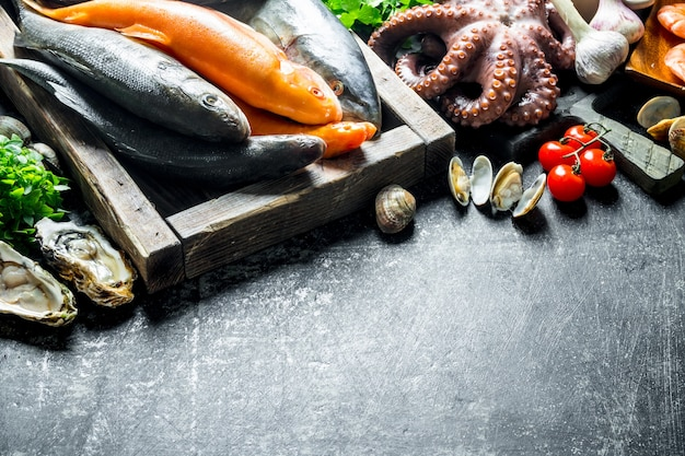 Uma variedade de peixes frescos, polvos e ostras.