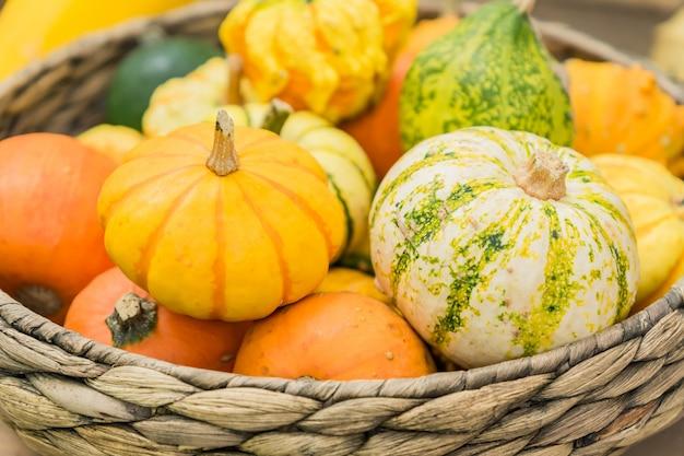 Uma variedade de pequenas abóboras decorativas de diferentes cores e formas em uma cesta. composição interior de outono.