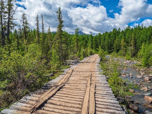Uma velha ponte de madeira vazia sobre um rio de montanha no fundo das geleiras, florestas de coníferas e montanhas.