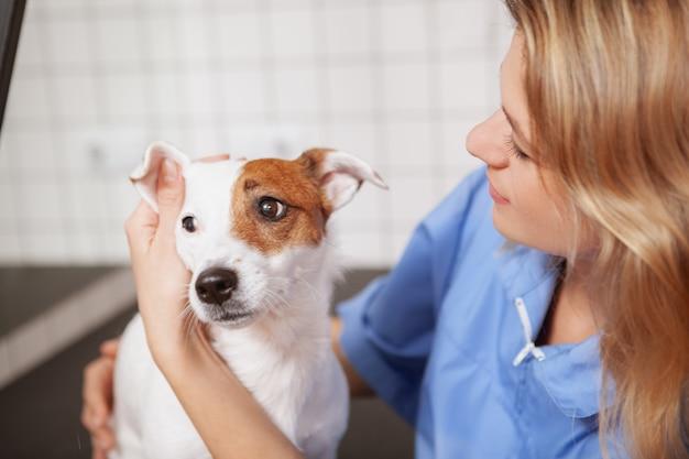 Uma veterinária fêmea amigável que trabalha em sua clínica