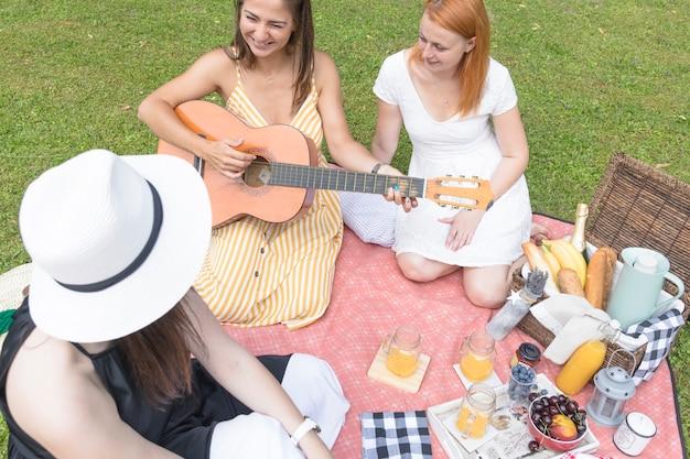 Uma visão aérea de amigos desfrutando no piquenique ao ar livre