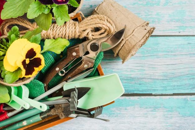 Uma visão aérea de plantas amor-perfeito; potes de turfa e equipamento de jardinagem na mesa