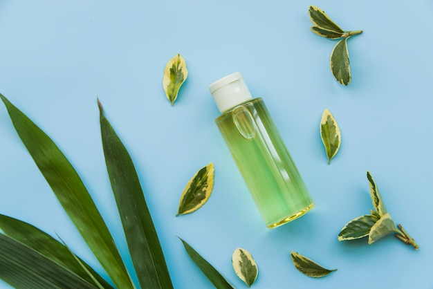 Uma visão aérea do frasco de spray verde com folhas verdes sobre fundo azul
