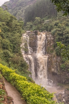 Uma vista da bela queda d'água na belíssima floresta de shri-lanka.
