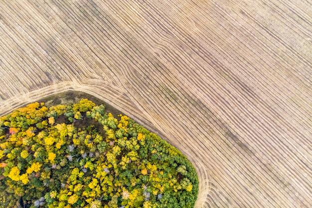 Uma vista de cima das florestas da floresta de outono e um campo agrícola na floresta. colher em um campo de trigo. estocar feno para o inverno. território de altai da rússia. vista do topo