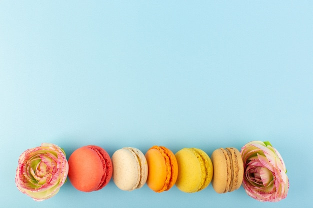 Uma vista de cima, macarons franceses coloridos