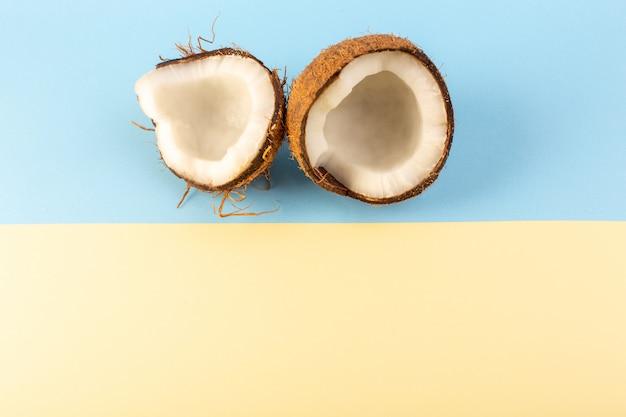 Uma vista superior coco nozes em fatias leitosas maduras frescas isoladas no azul gelado e creme
