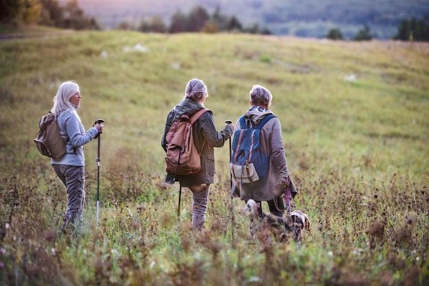 Uma vista traseira de amigas sêniors com cachorro em caminhada ao ar livre na natureza.