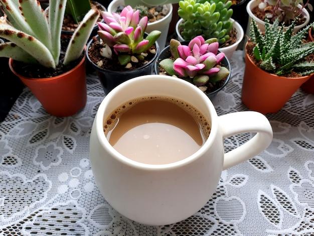 Uma xícara de café quente sobre fundo de cactos e suculentas