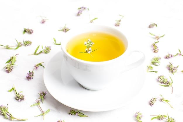 Uma xícara de chá com flores de tomilho em um fundo branco. a vista do topo. conceito de medicina popular.