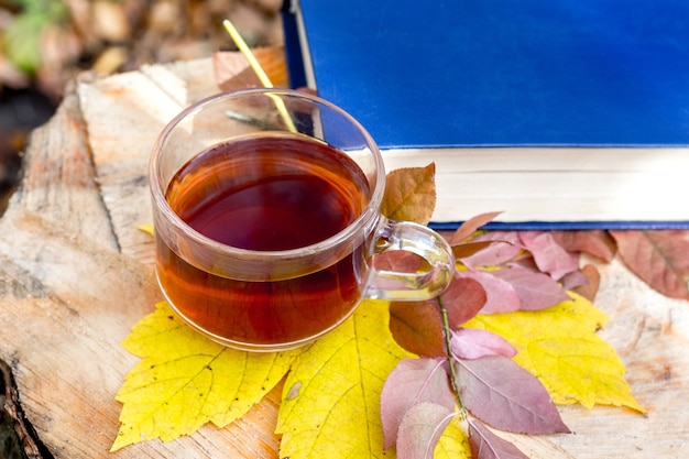 Uma xícara de chá e uma folha de bordo amarela perto de um livro na floresta de outono em um toco