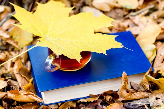 Uma xícara de chá em um livro na floresta de outono é coberta por uma folha de bordo amarela