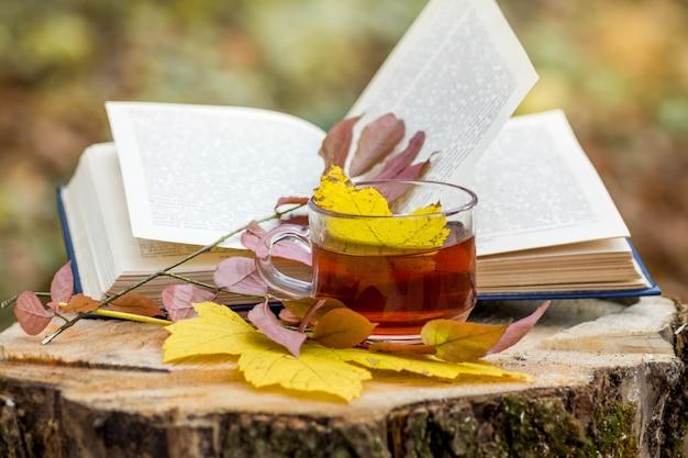 Uma xícara de chá perto de um livro desdobrado e folhas de outono caídas na floresta em um toco_