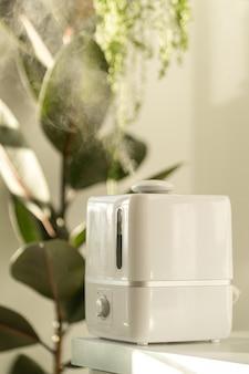 Umidificador de ar durante o período de aquecimento em casa cercado por plantas domésticas, vapor do difusor. cuidados com a planta