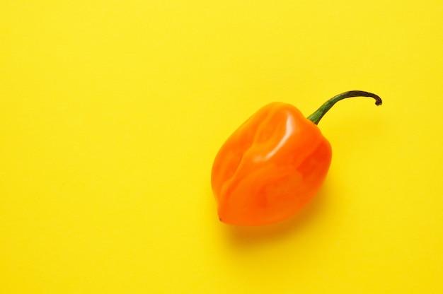 Único habanero chille laranja