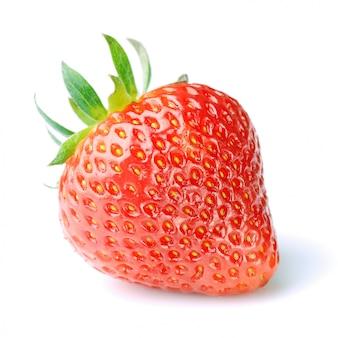 Único morango vermelho fresco em branco