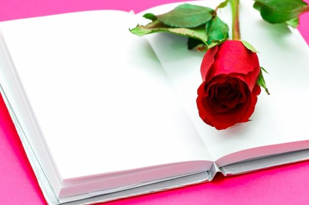 Único simples de rosa vermelha sobre o livro aberto branco, conceito de dia dos namorados