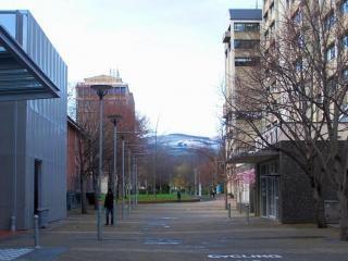 Universidade de otago - inverno 2010