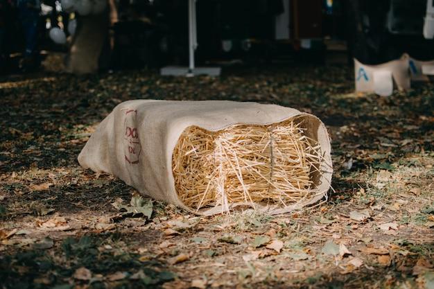 Upcycling idéias, reciclar artesanato. bancos ecológicos alternativos