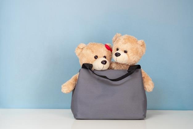 Urso de peluche dois no saco em uma tabela branca e em um fundo azul.