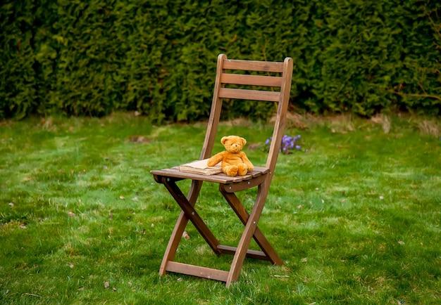 Urso de pelúcia e livro na cadeira de madeira na grama verde na primavera