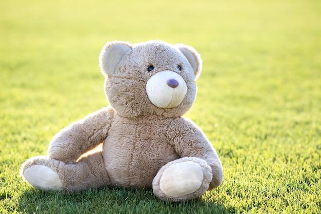 Urso de pelúcia fofo brinquedo sentado na grama verde no verão.