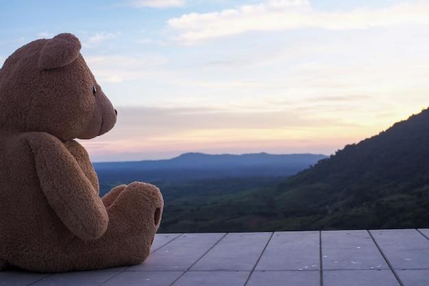 Urso de pelúcia sentado sozinho em uma varanda de madeira. parece triste e solitário