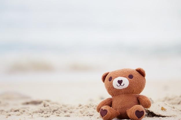 Urso está sentado na praia.