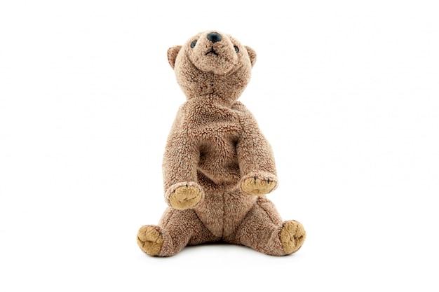 Urso pardo de brinquedo isolado no fundo branco